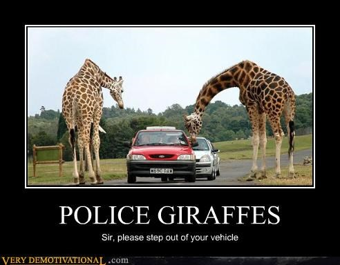 POLICE GIRAFFES