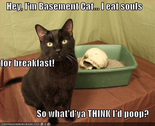 Hey, I'm Basement Cat... I eat souls for breakfast! So what'd'ya THINK I'd poop?