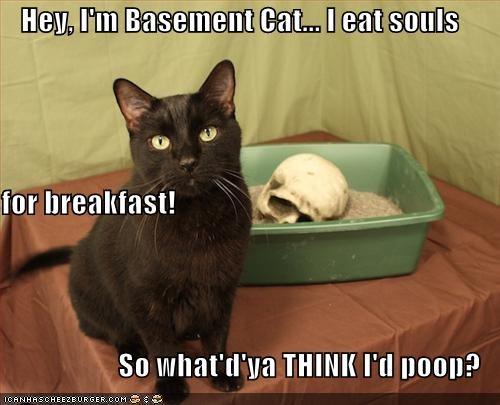 Hey, I'm Basement Cat... I eat souls for breakfast! So what'd'ya THINK I'd poop?
