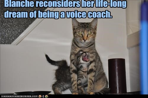 caption,captioned,cat,coach,do not want,dream,horrible,kitten,lifelong,reconsider,reconsidering,singing,voice