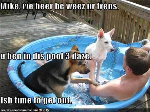 Mike, we heer bc weez ur frens. u ben in dis pool 3 daze. Ish time to get out.