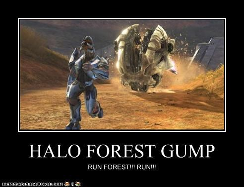 HALO FOREST GUMP