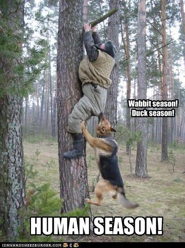Wabbit season! Duck season!