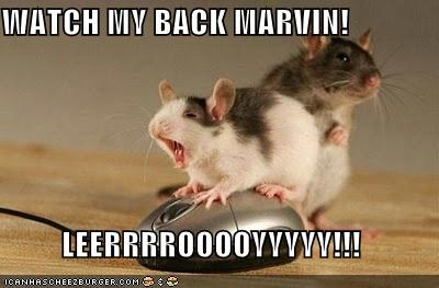 WATCH MY BACK MARVIN!  LEERRRROOOOYYYYY!!!