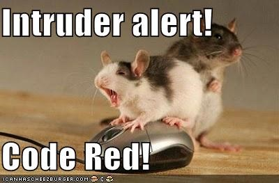 Intruder alert!  Code Red!