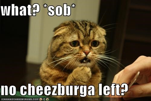 what? *sob*  no cheezburga left?
