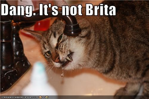 Dang. It's not Brita