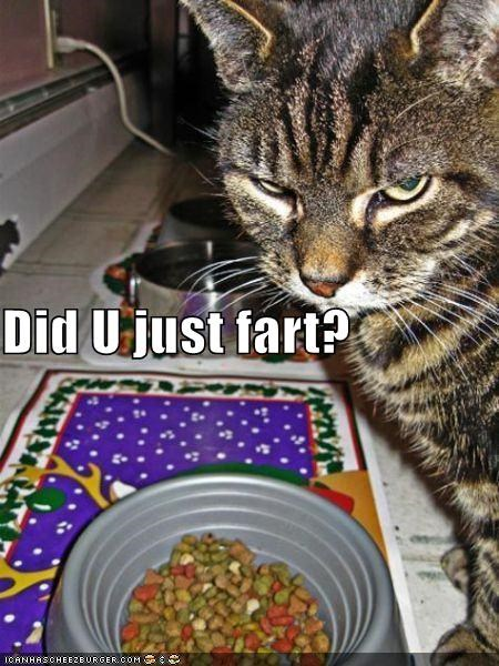 Did U just fart?