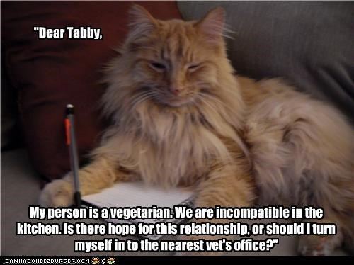 """""""Dear Tabby,"""