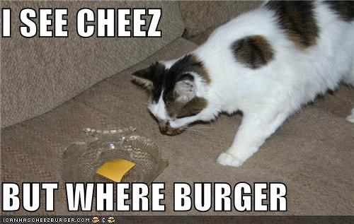 I SEE CHEEZ   BUT WHERE BURGER