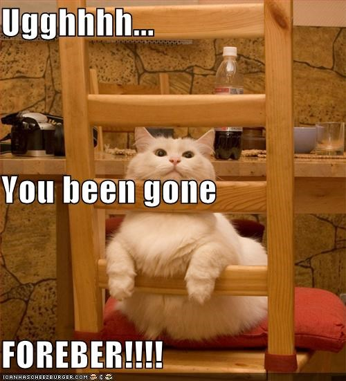 Ugghhhh... You been gone FOREBER!!!!