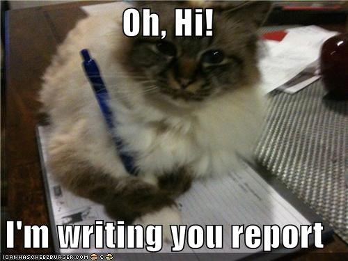 Oh, Hi!  I'm writing you report
