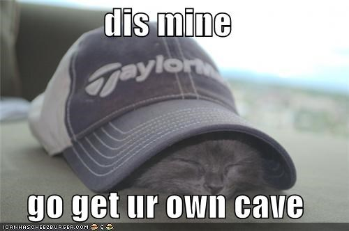 baseball hat,caption,captioned,cave,cute,get your own,hiding,kitten,mine