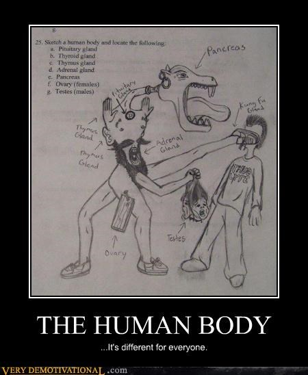 bodies,everyone is different,kung fu,monster,pancreas,politics,Pure Awesome,school,thug life,variety