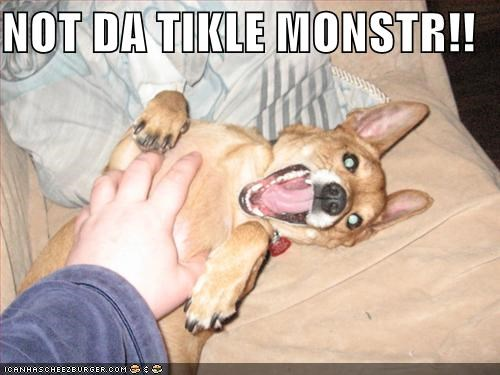 belly,do not want,scared,tickle monster,tickling,upset,whatbreed