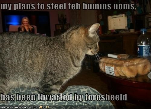 my plans to steel teh humins noms,  has been thwarted by forcsheeld