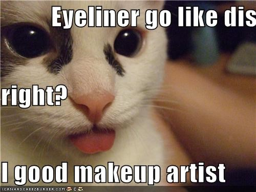 Eyeliner go like dis  right? I good makeup artist