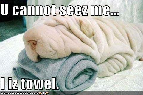 U cannot seez me...  I iz towel.