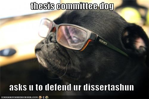 thesis committee dog  asks u to defend ur dissertashun