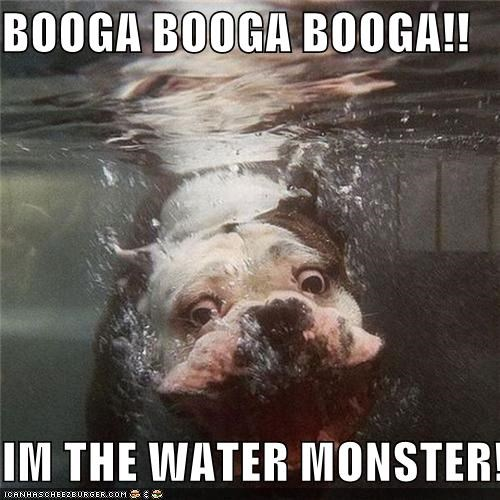 BOOGA BOOGA BOOGA!!  IM THE WATER MONSTER!