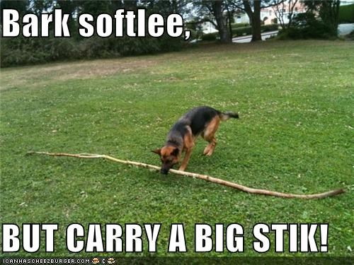 Bark softlee,  BUT CARRY A BIG STIK!