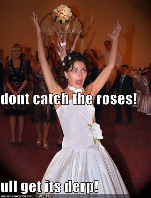 dont catch the roses! ull get its derp!