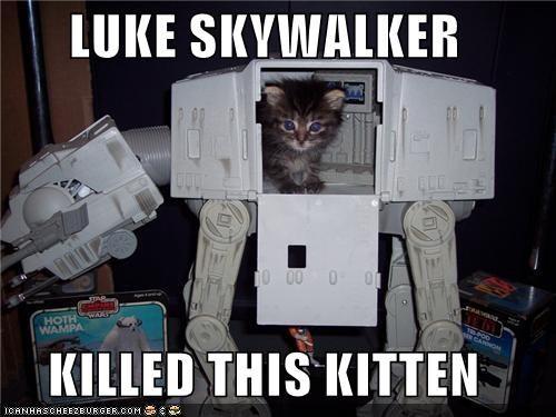 LUKE SKYWALKER  KILLED THIS KITTEN