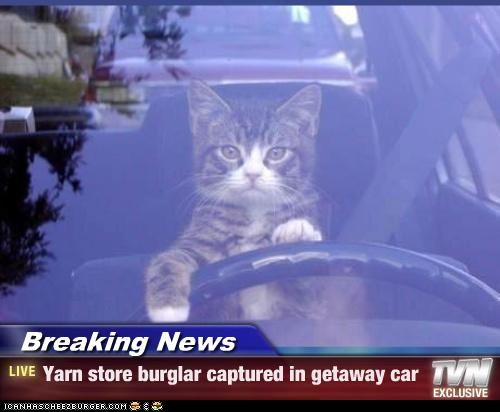 Breaking News - Yarn store burglar captured in getaway car