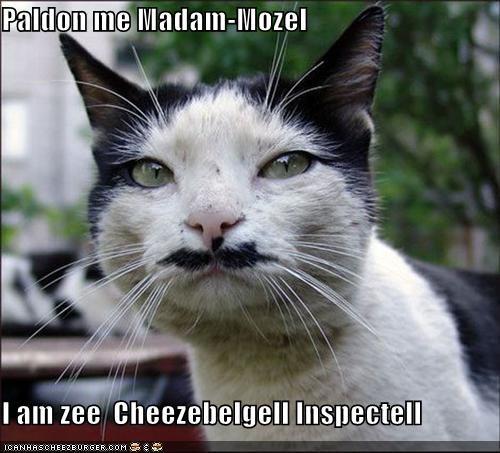 Paldon me Madam-Mozel  I am zee  Cheezebelgell Inspectell