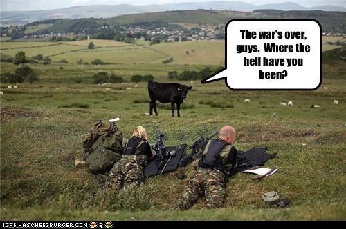 animals,cow,military,soldiers,stupid,war