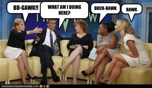 barack obama,Democrat,funny,lolz,president,the view,TV