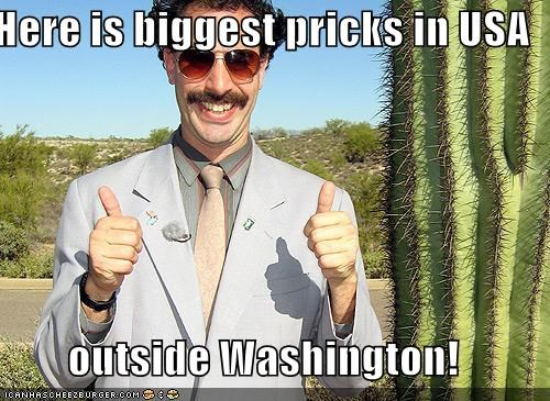 Here is biggest pricks in USA  outside Washington!