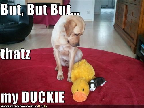 But, But But... thatz my DUCKIE
