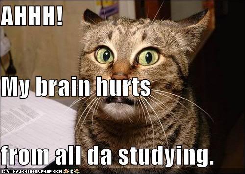 I studied too hard!