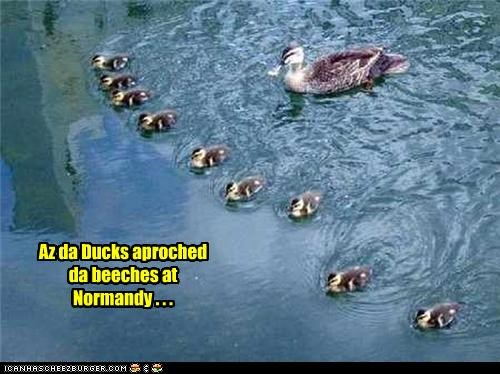Az da Ducks aproched da beeches at Normandy . . .