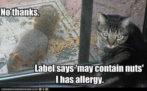 No thanks.                          Label says 'may contain nuts'                                   I has allergy.