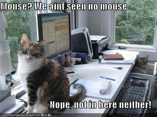 Mouse? We aint seen no mouse . .  Nope, not in here neither!