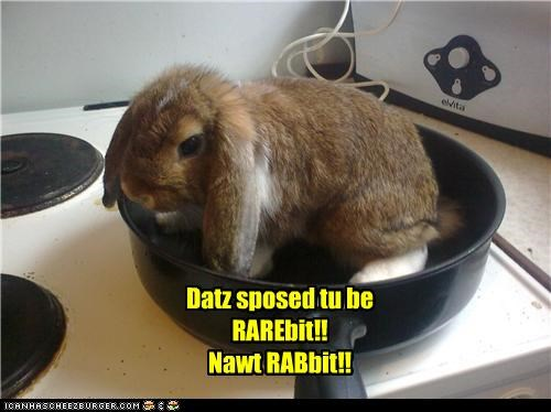 Datz sposed tu be RAREbit!! Nawt RABbit!!