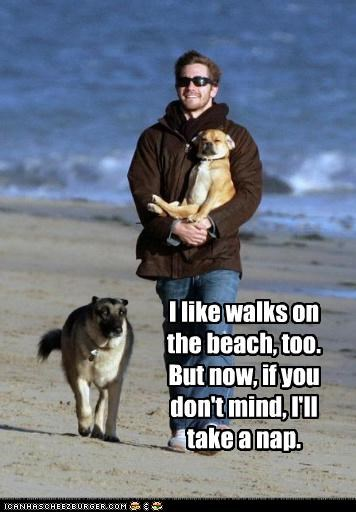 I like walks on the beach, too. But now, if you don't mind, I'll take a nap.