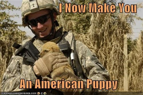 I Now Make You   An American Puppy