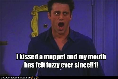 I kissed a muppet and my mouth has felt fuzzy ever since!!1!