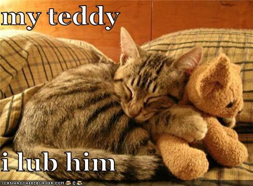 my teddy  i lub him