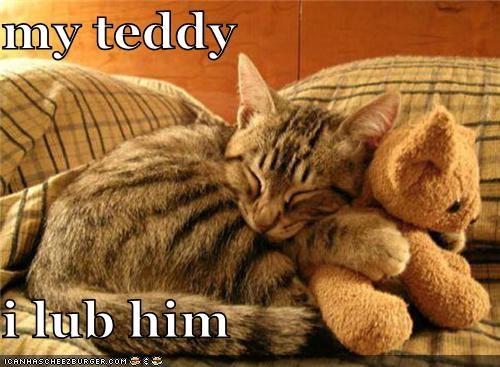 my teddy  i lub him