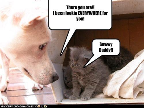 Sowwy Daddy!!