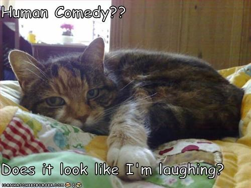 Human Comedy??  Does it look like I'm laughing?
