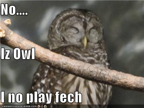 No.... Iz Owl I no play fech