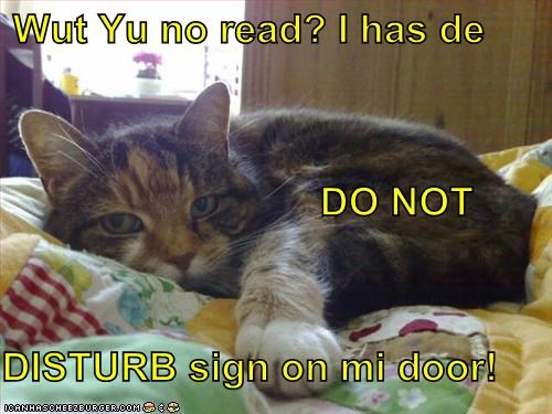 Wut Yu no read? I has de                              DO NOT DISTURB sign on mi door!