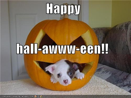Happy hall-awww-een!!