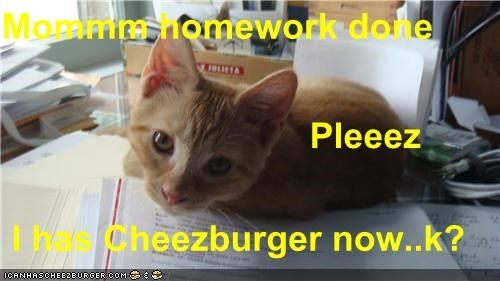 Mommm homework done                                Pleeez   I has Cheezburger now..k?