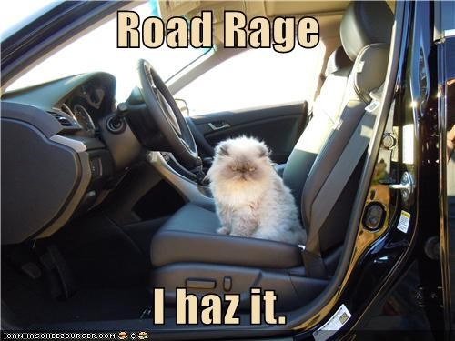 Road Rage  I haz it.
